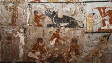 Photo of Archeologen ontdekken 4.400 jaar oude tombe van Egyptische priesteres Haptet
