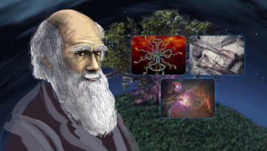 Photo of Wetenschappers tekenen petitie tegen Darwins evolutietheorie