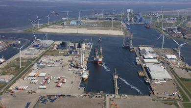Photo of De RWE centrale Eemshaven wil 1,6 miljard kilo hout per jaar gaan verstoken.