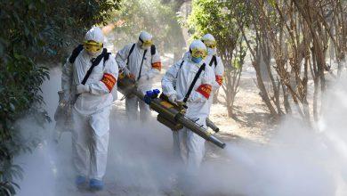 Photo of Het Corona Virus, wat is er werkelijk aan de hand?